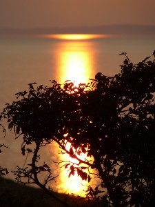 Послание астролога на новолуние и солнечное затмение в Деве